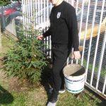 SŠG ELBA - sadenie stromčekov